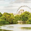 Enjoy the London City Summer